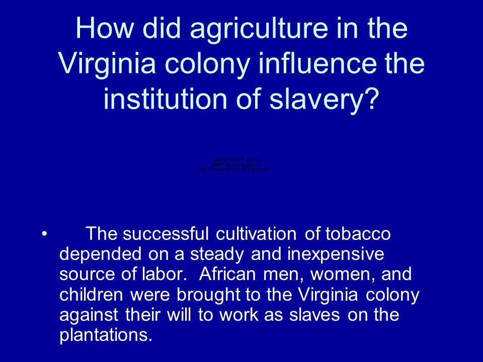 How did agriculture in the Virginia colony influence the institution of slavery