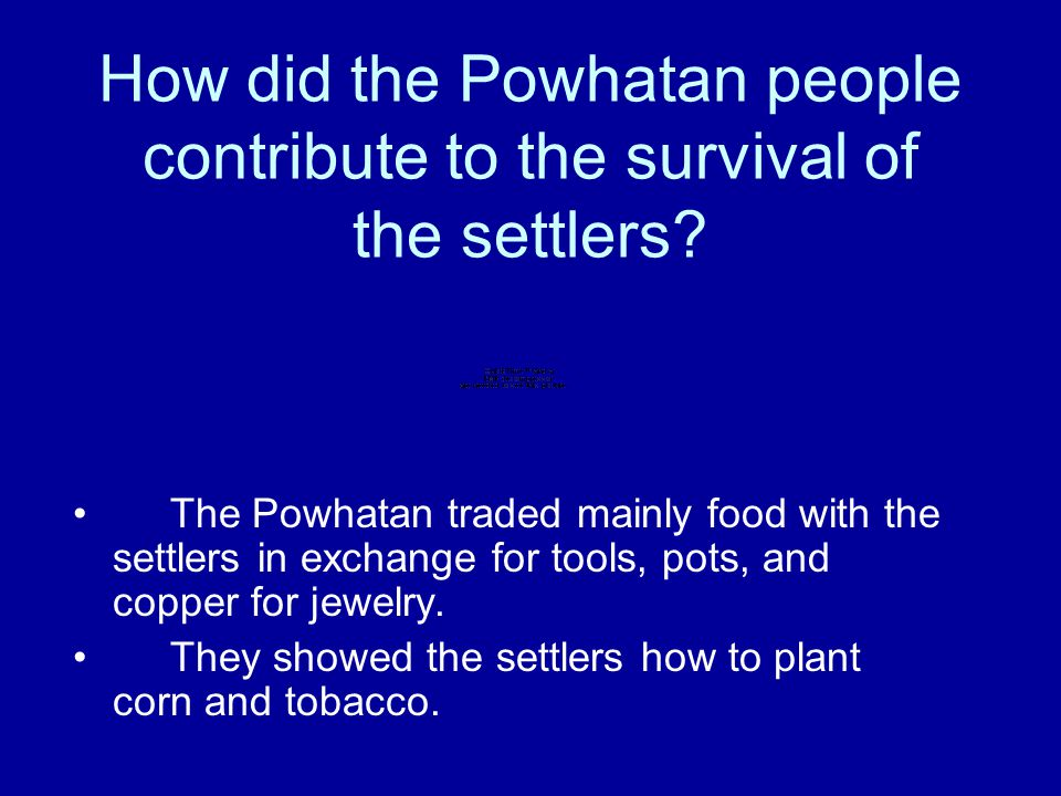 How did the Powhatan people contribute to the survival of the settlers