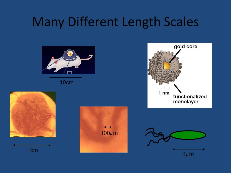 Many Different Length Scales