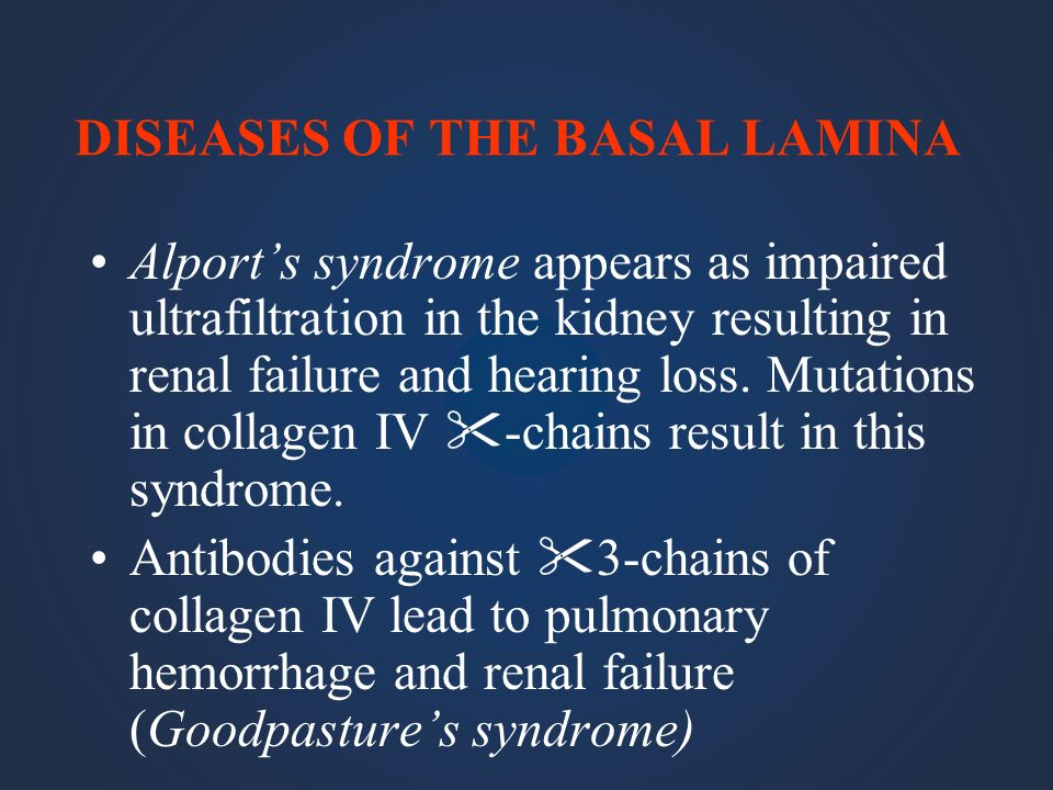 DISEASES OF THE BASAL LAMINA