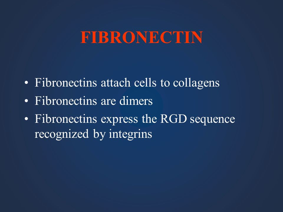 FIBRONECTIN Fibronectins attach cells to collagens