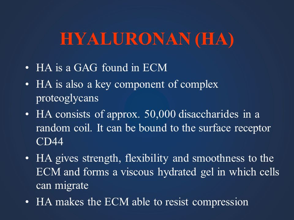 HYALURONAN (HA) HA is a GAG found in ECM