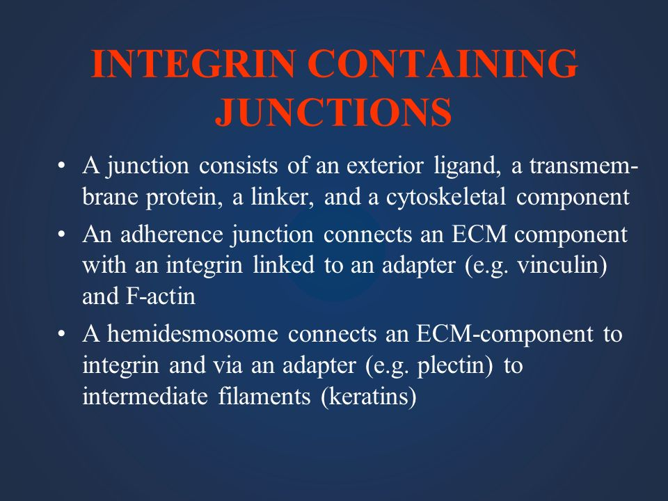 INTEGRIN CONTAINING JUNCTIONS