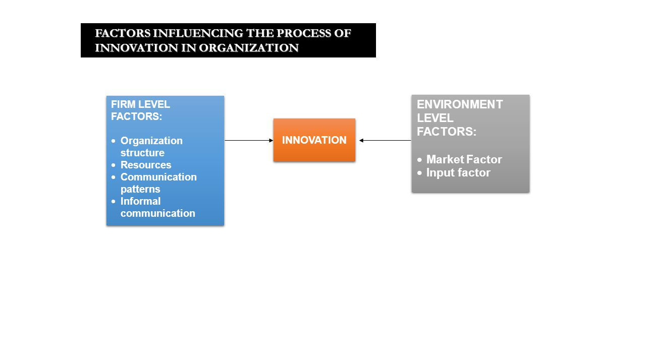 FACTORS INFLUENCING THE PROCESS OF INNOVATION IN ORGANIZATION