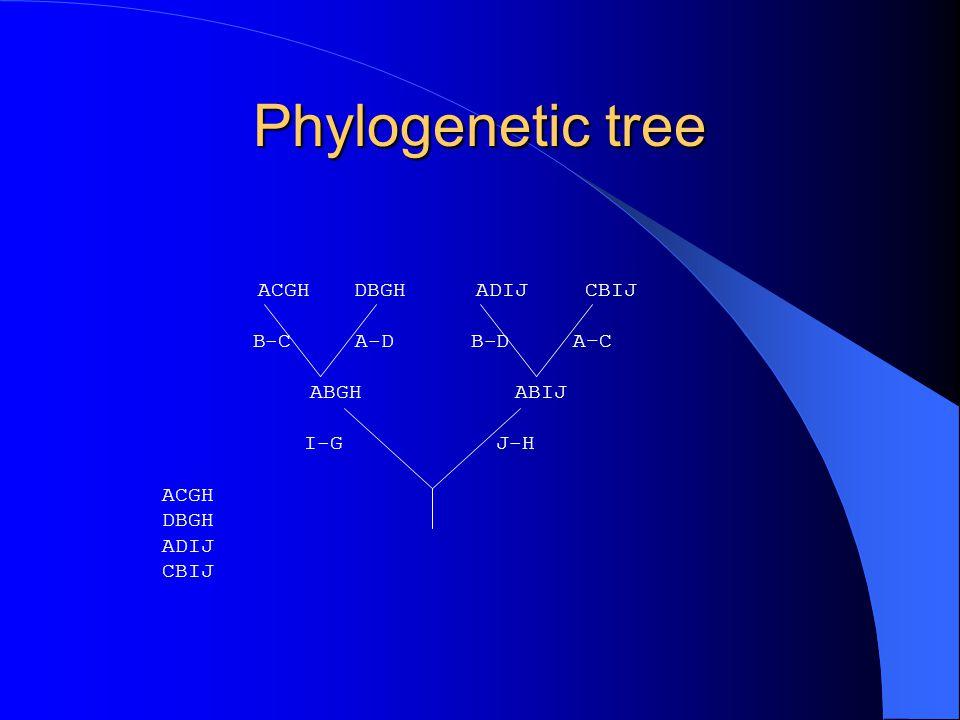 Phylogenetic tree ACGH DBGH ADIJ CBIJ B-C A-D B-D A–C ABGH ABIJ