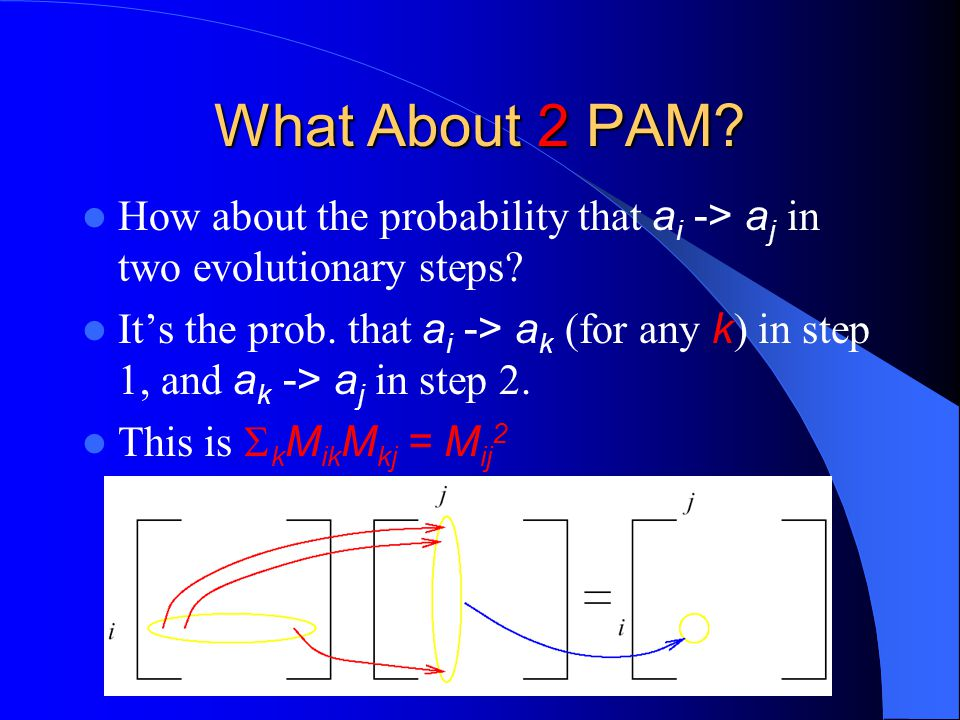 What About 2 PAM How about the probability that ai -> aj in two evolutionary steps