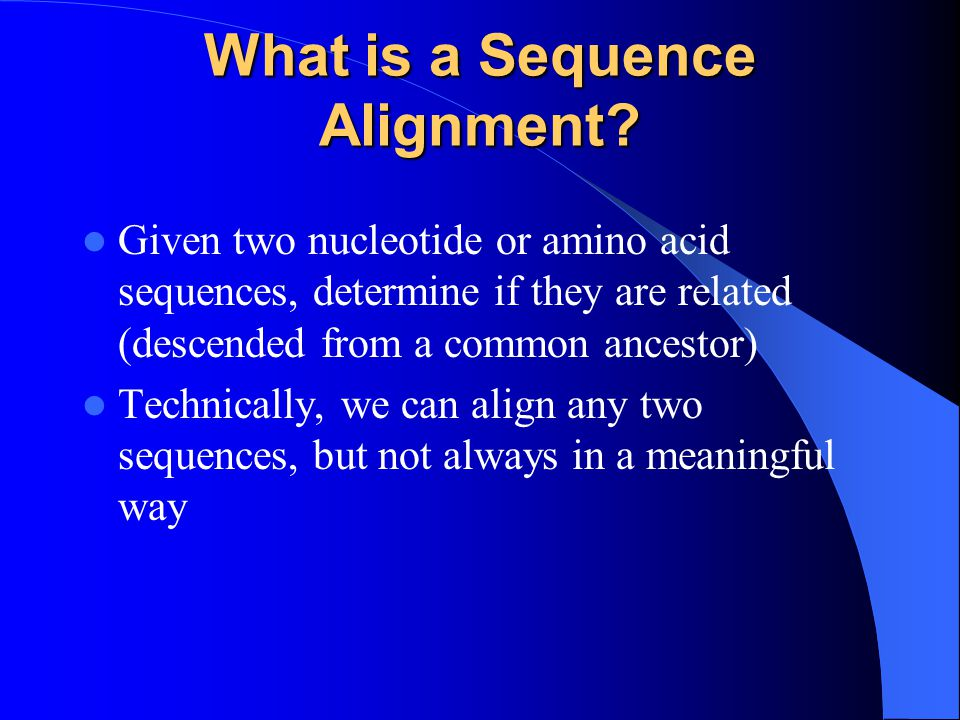 What is a Sequence Alignment