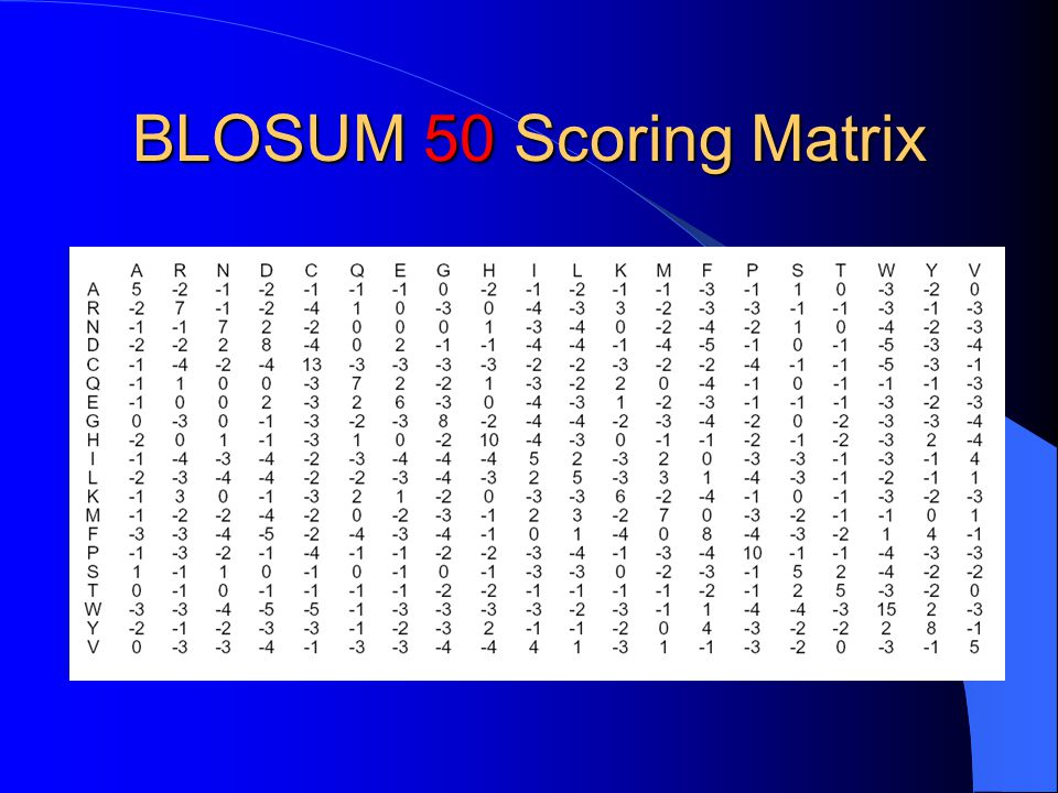 BLOSUM 50 Scoring Matrix