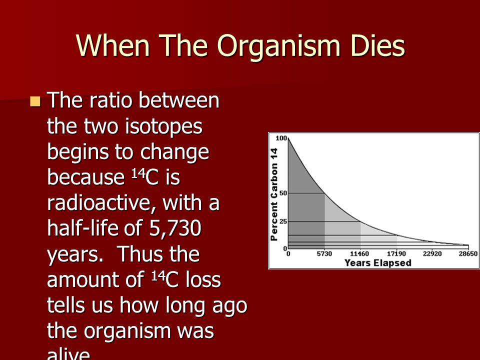 When The Organism Dies