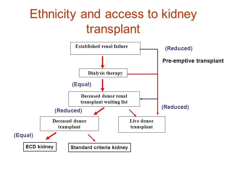 Ethnicity and access to kidney transplant
