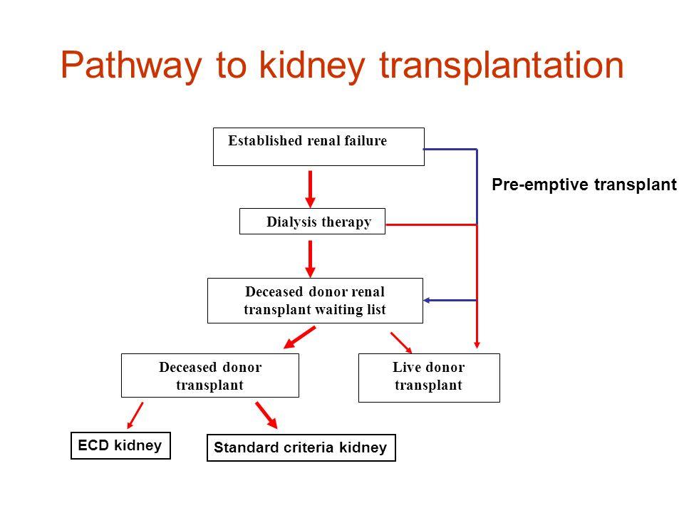 Pathway to kidney transplantation