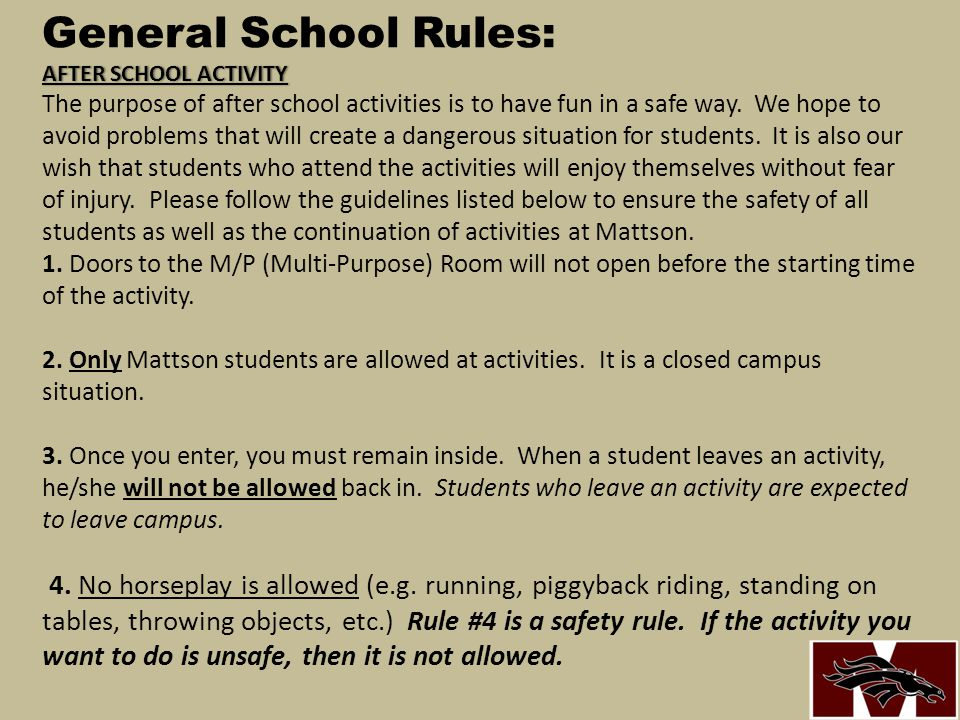 General School Rules: AFTER SCHOOL ACTIVITY The purpose of after school activities is to have fun in a safe way.