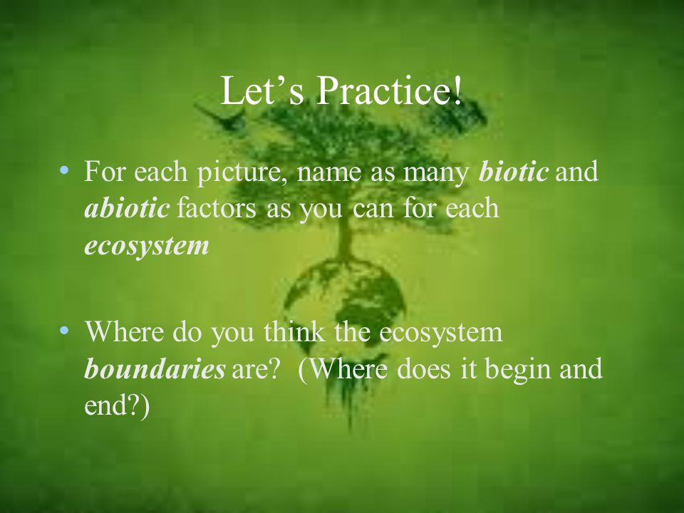 Let's Practice! For each picture, name as many biotic and abiotic factors as you can for each ecosystem.