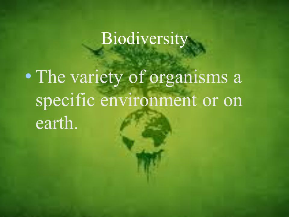 The variety of organisms a specific environment or on earth.