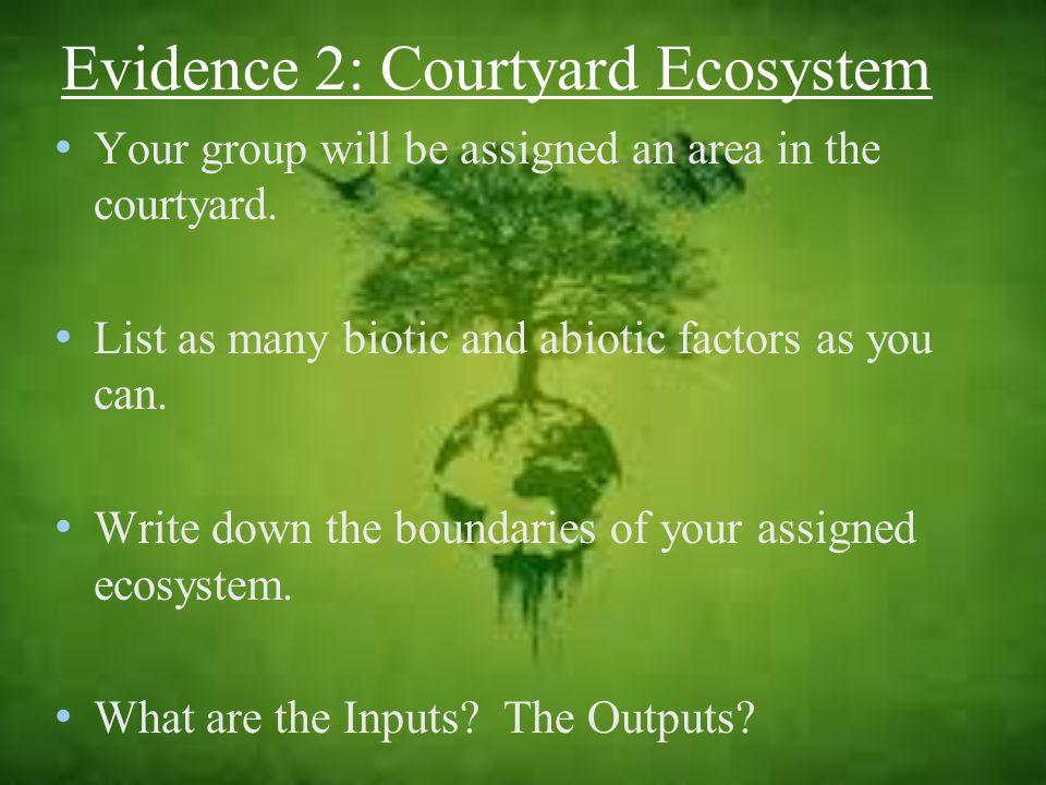Evidence 2: Courtyard Ecosystem