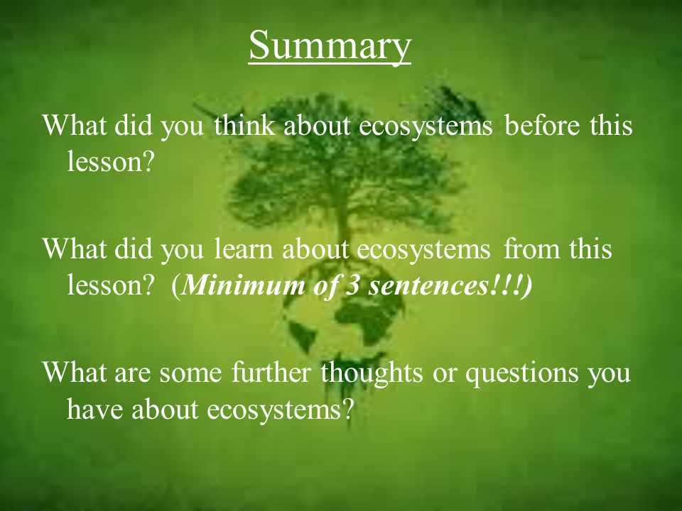 Summary What did you think about ecosystems before this lesson