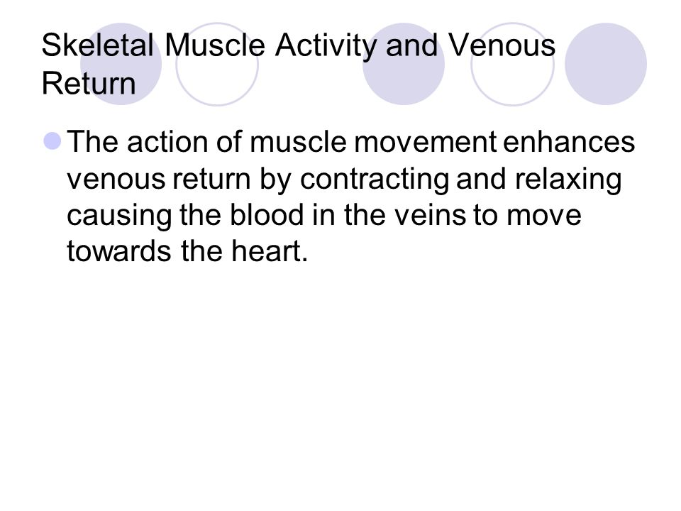 Skeletal Muscle Activity and Venous Return