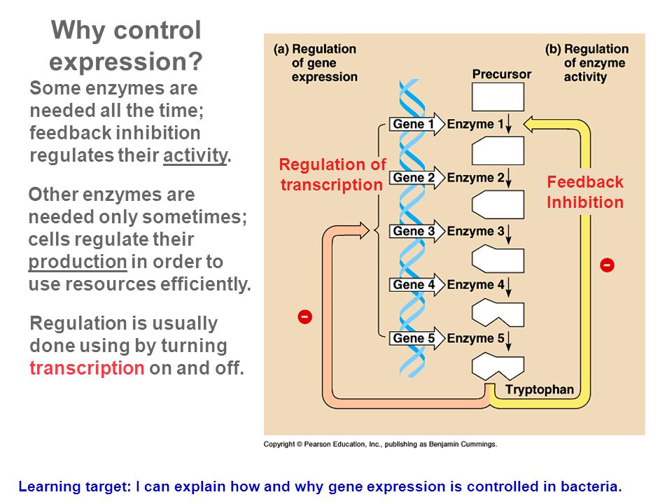 Why control expression