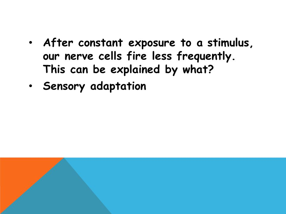 After constant exposure to a stimulus, our nerve cells fire less frequently. This can be explained by what