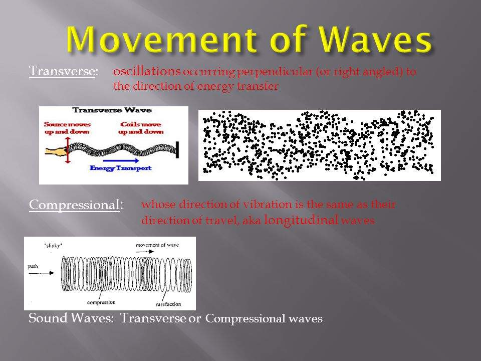 Movement of Waves Transverse: Compressional: