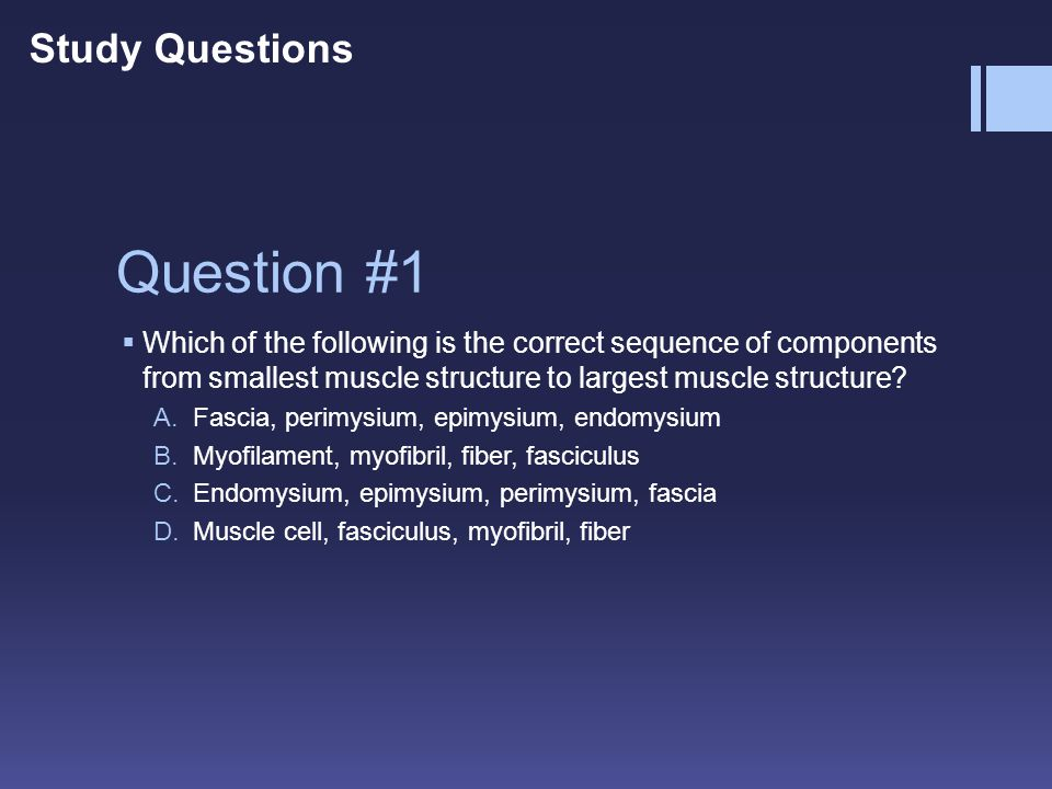 Question #1 Study Questions