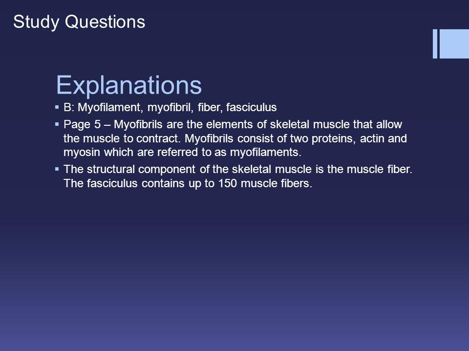 Explanations Study Questions
