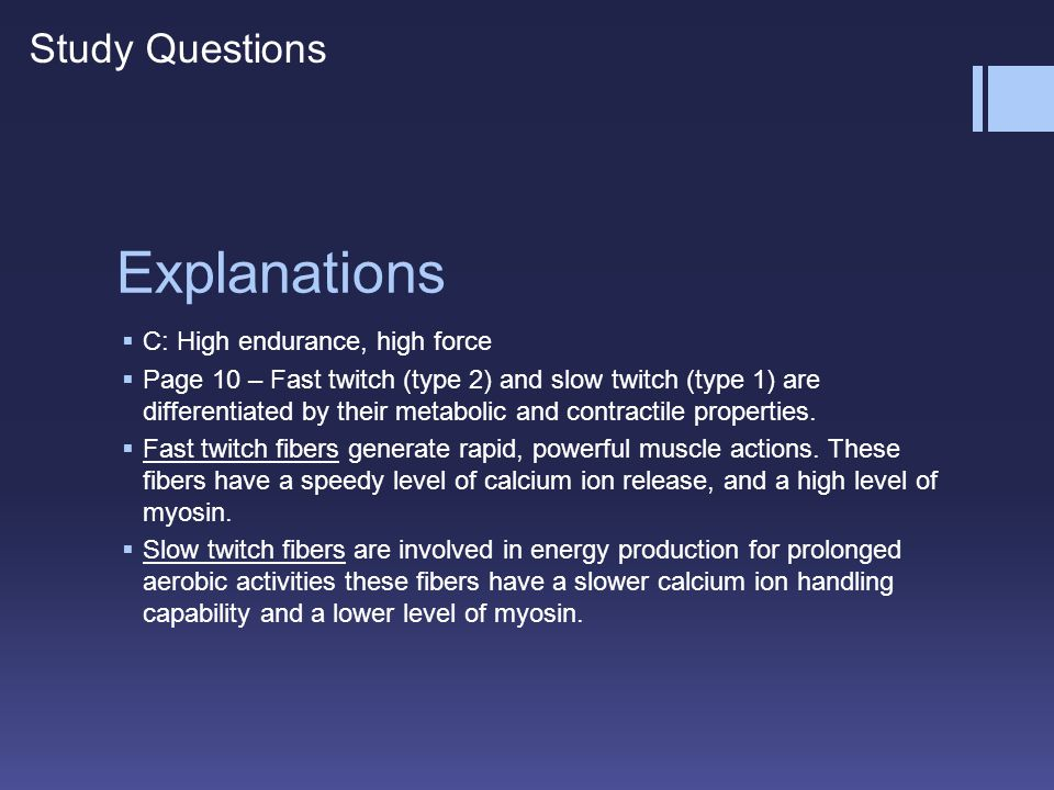 Explanations Study Questions C: High endurance, high force