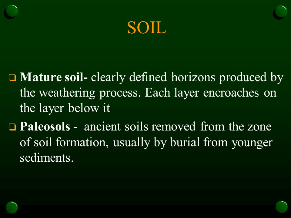 SOIL Mature soil- clearly defined horizons produced by the weathering process. Each layer encroaches on the layer below it.