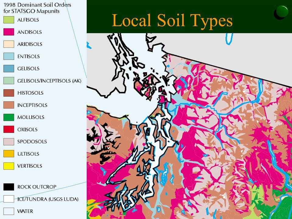 Local Soil Types