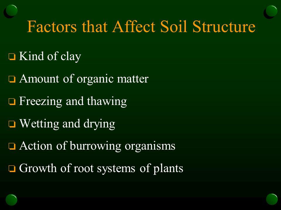 Factors that Affect Soil Structure