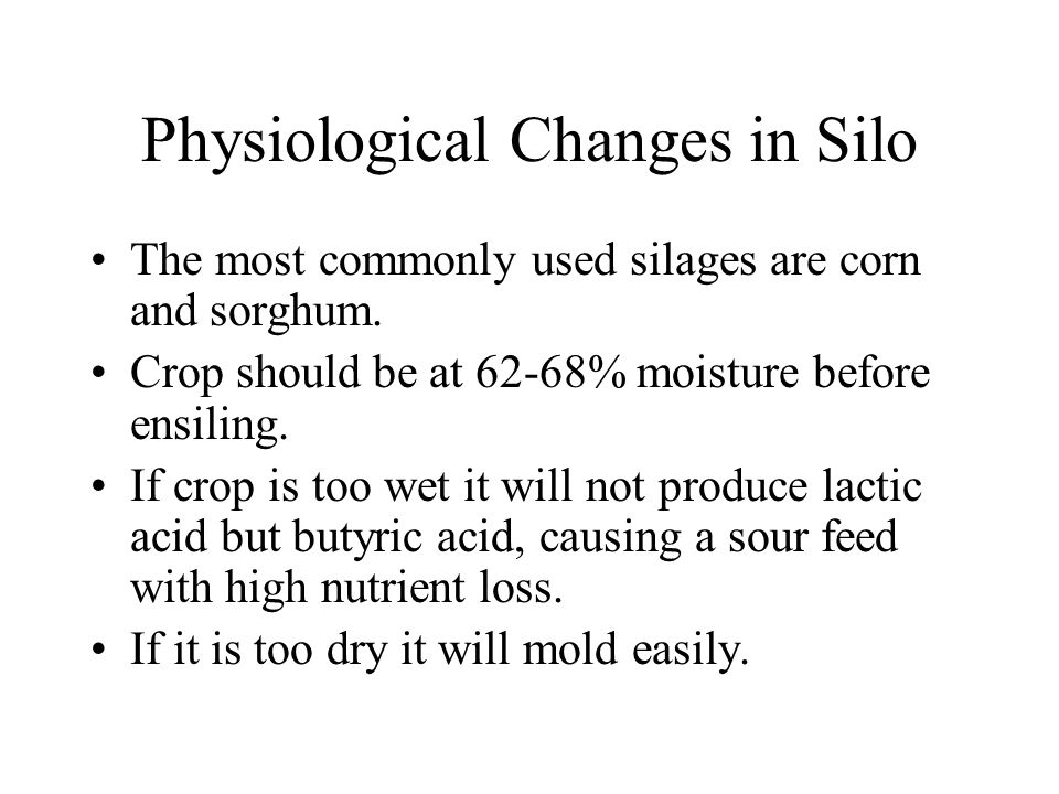 Physiological Changes in Silo