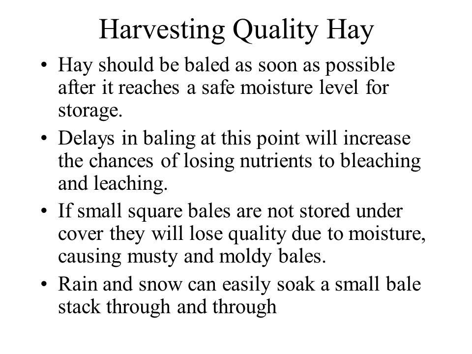 Harvesting Quality Hay