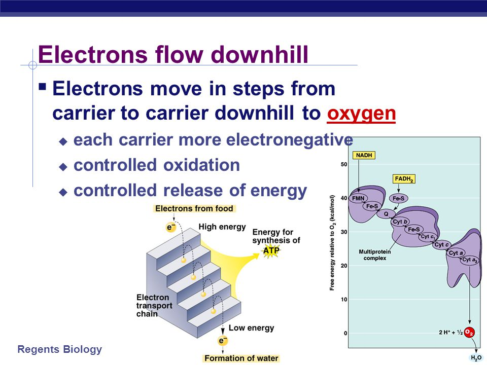 Electrons flow downhill