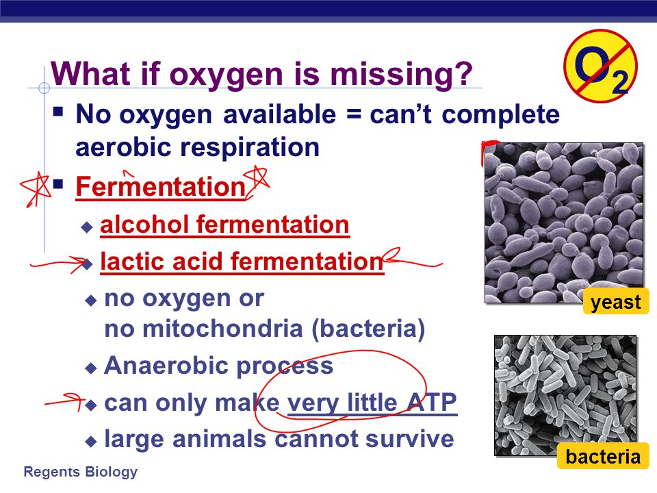 What if oxygen is missing