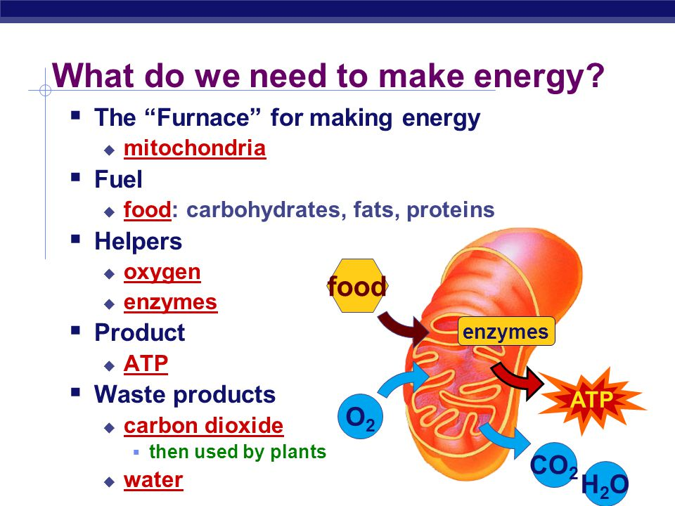 What do we need to make energy