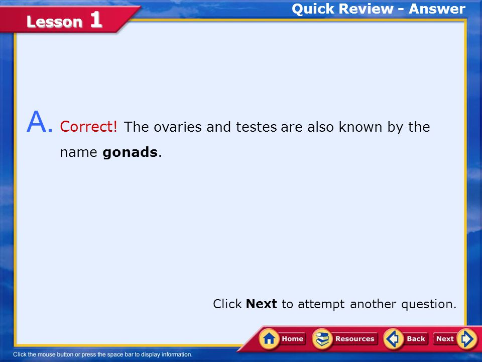 A. Correct! The ovaries and testes are also known by the name gonads.