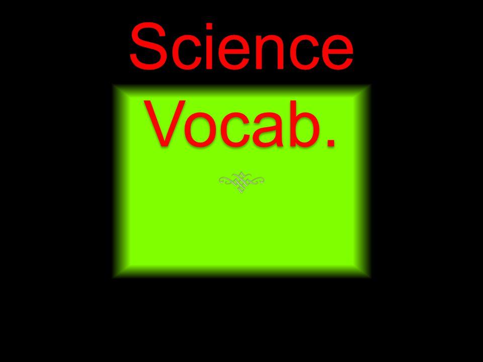Science Vocab.