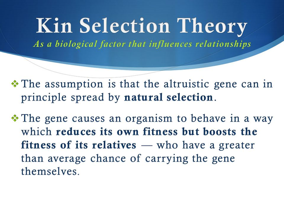 Kin Selection Theory As a biological factor that influences relationships