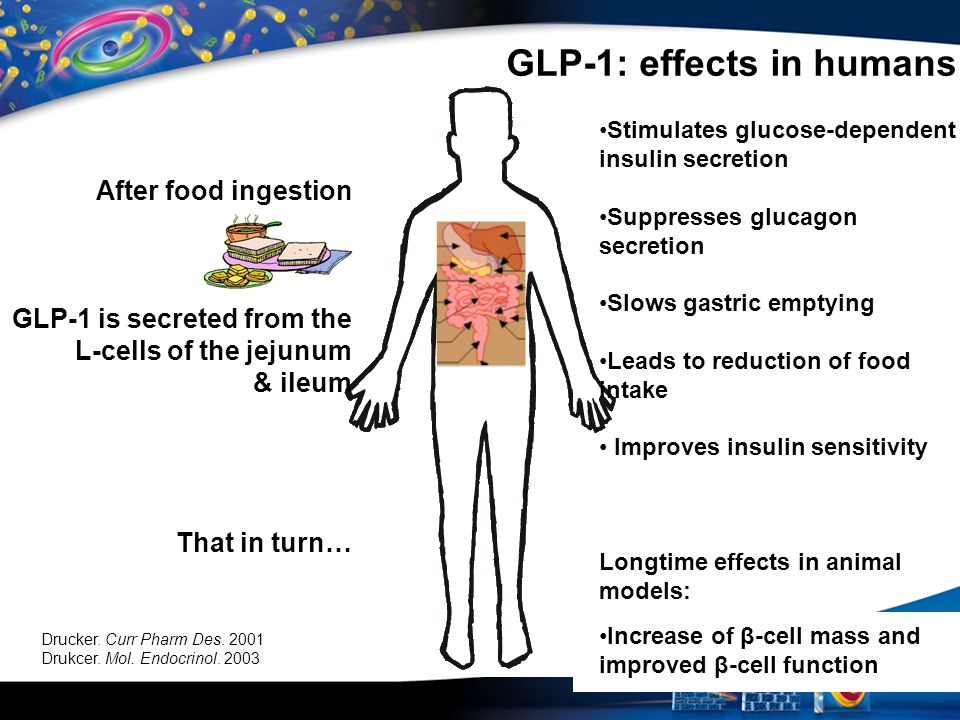 GLP-1: effects in humans