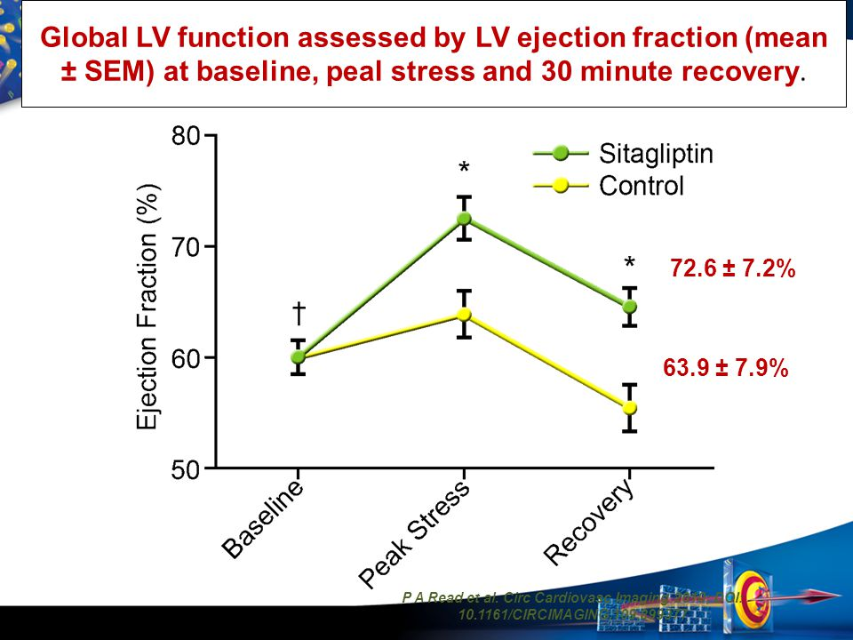 Global LV function assessed by LV ejection fraction (mean ± SEM) at baseline, peal stress and 30 minute recovery.