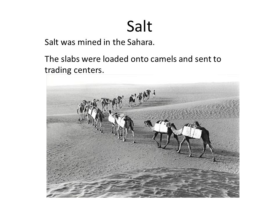 Salt Salt was mined in the Sahara.