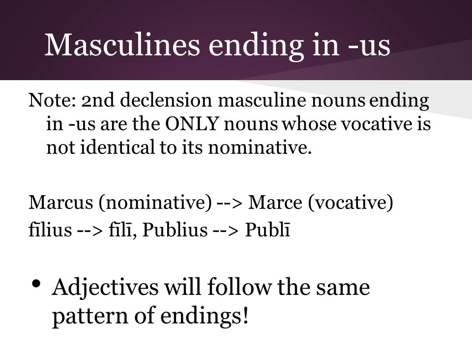 Masculines ending in -us