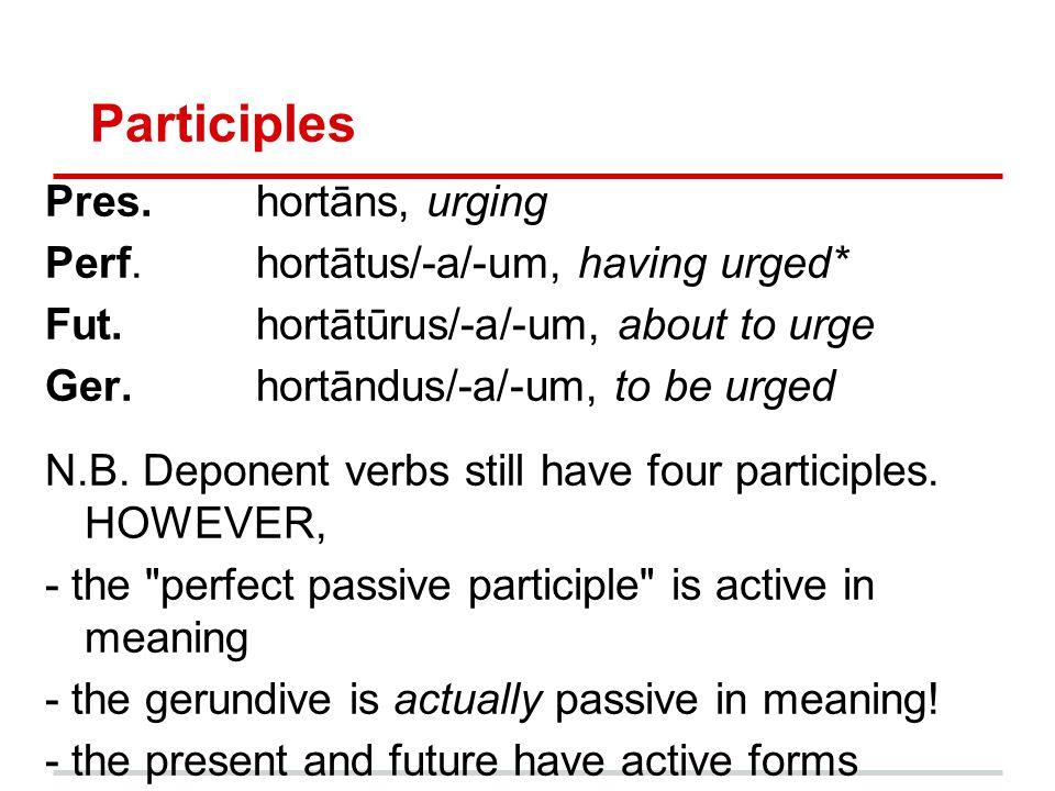 Participles Pres. hortāns, urging Perf. hortātus/-a/-um, having urged*