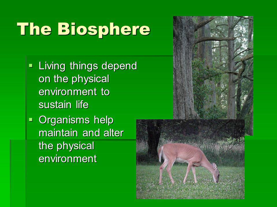 The Biosphere Living things depend on the physical environment to sustain life.