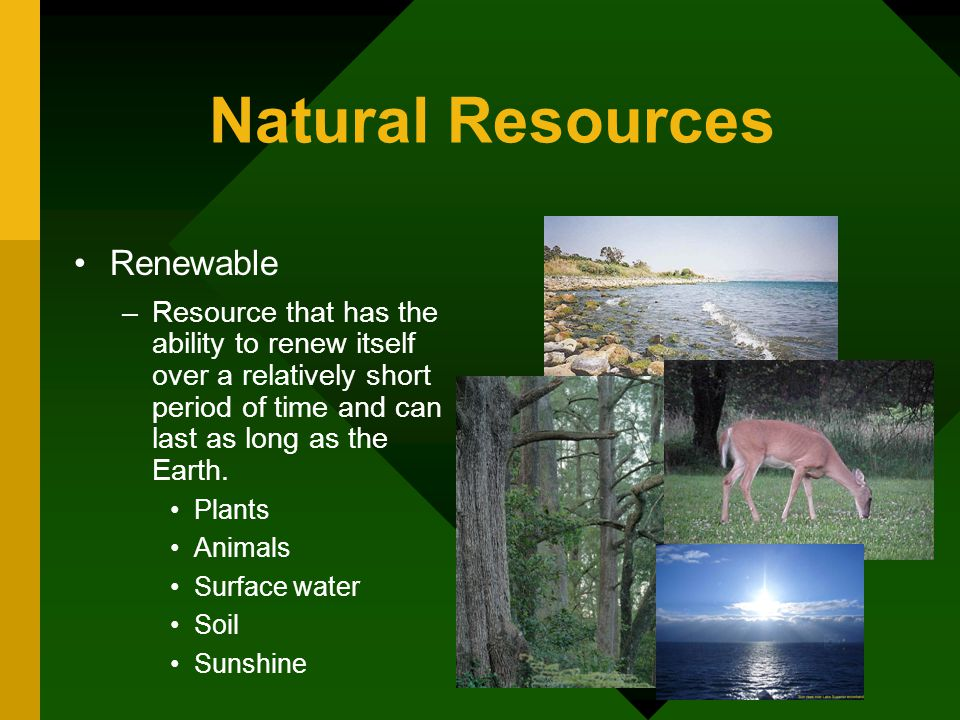 Soil Is A Natural Renewable Resource