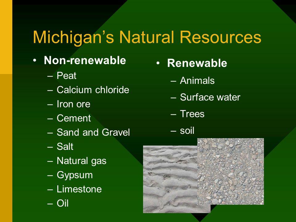 Michigan's Natural Resources
