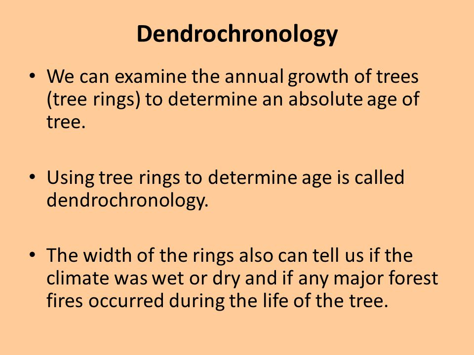 Dendrochronology We can examine the annual growth of trees (tree rings) to determine an absolute age of tree.