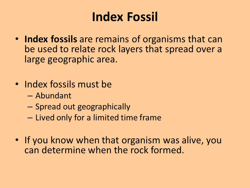 Index Fossil Index fossils are remains of organisms that can be used to relate rock layers that spread over a large geographic area.