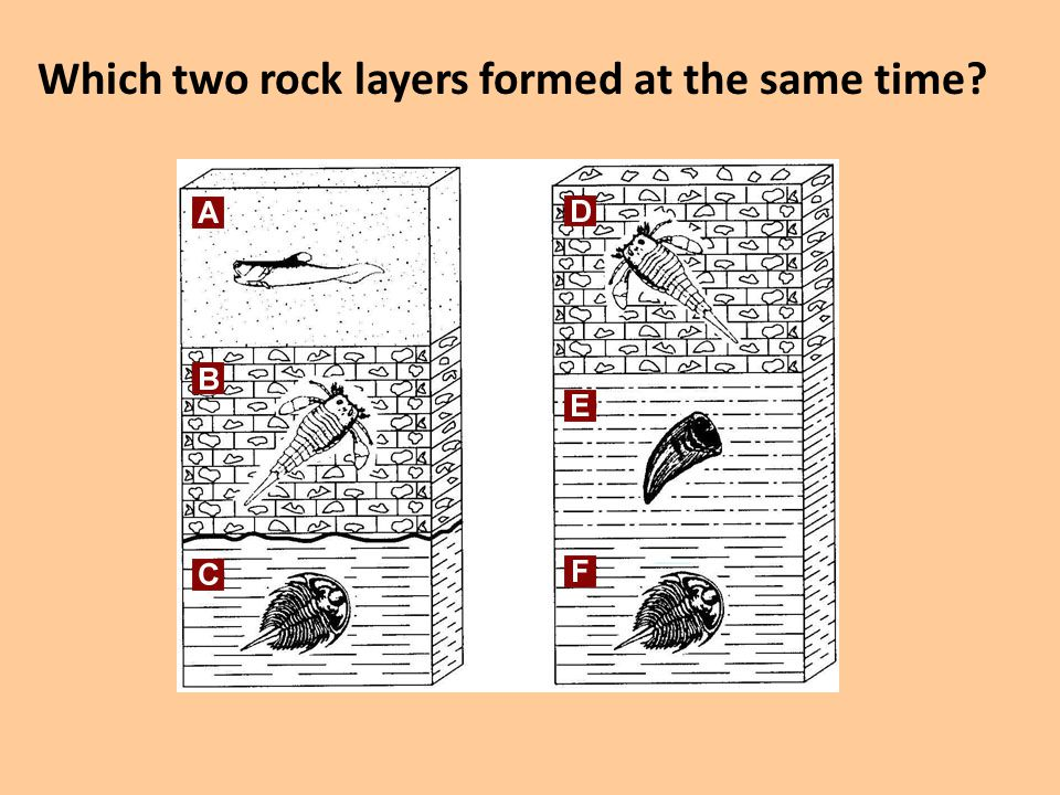 Which two rock layers formed at the same time