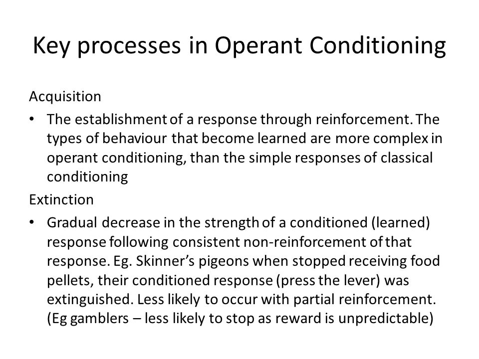 Key processes in Operant Conditioning